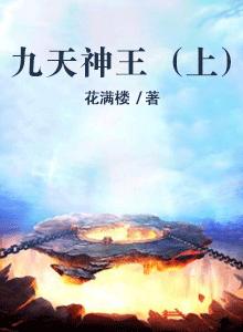 九天神王(上)